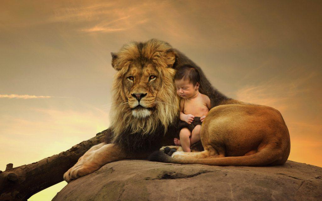 william-lion4